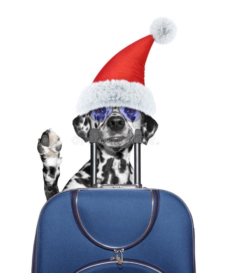 Le chien de Santa indique au revoir et part en vacances avec une valise dans salut image libre de droits