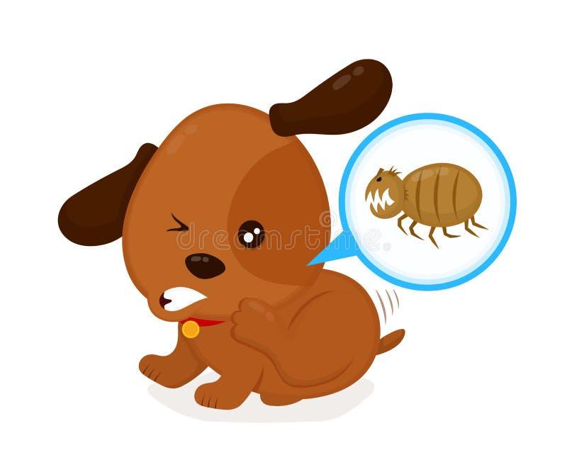 Le chien irritant fâché mignon raye des puces  illustration libre de droits