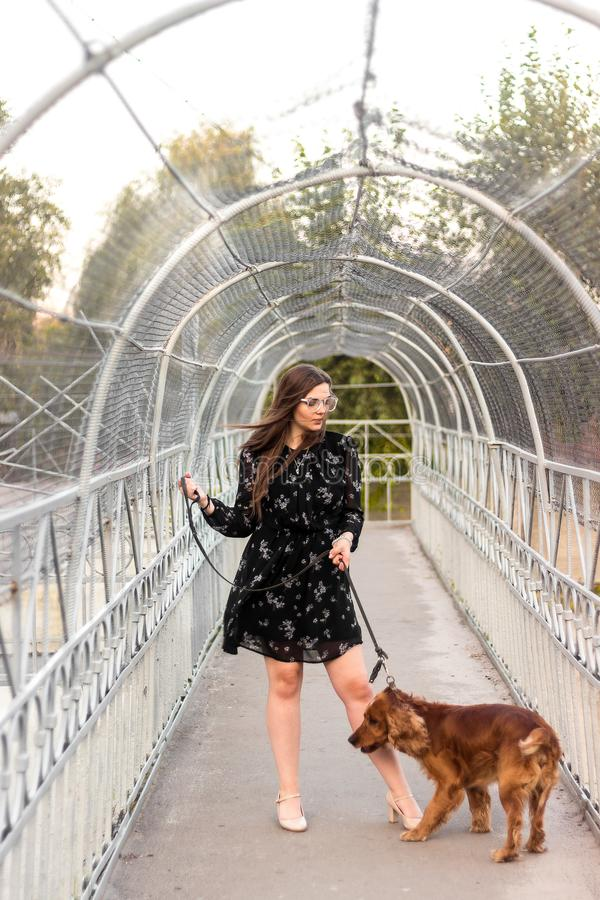 Le chien sur une laisse marche avec la maîtresse de fille sur le chemin en parc de ville, croisent le pont images libres de droits