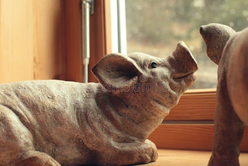 Le chiffre de porc se trouve vers la fenêtre image stock