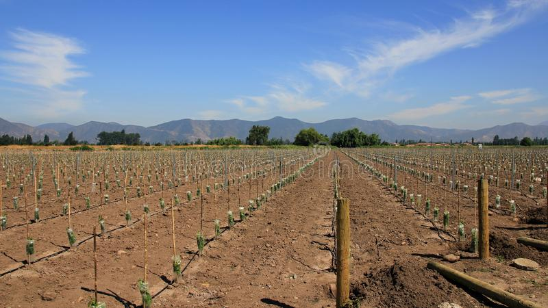 Le Chili 2015 photos libres de droits