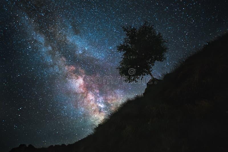 Le ciel étoilé est une manière laiteuse et une pente de montagne avec un arbre Horizontal de nuit image stock