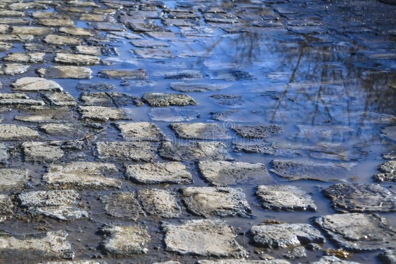 Le ciel bleu de ressort s'est reflété dans les magmas sur le trottoir de pavé rond images libres de droits
