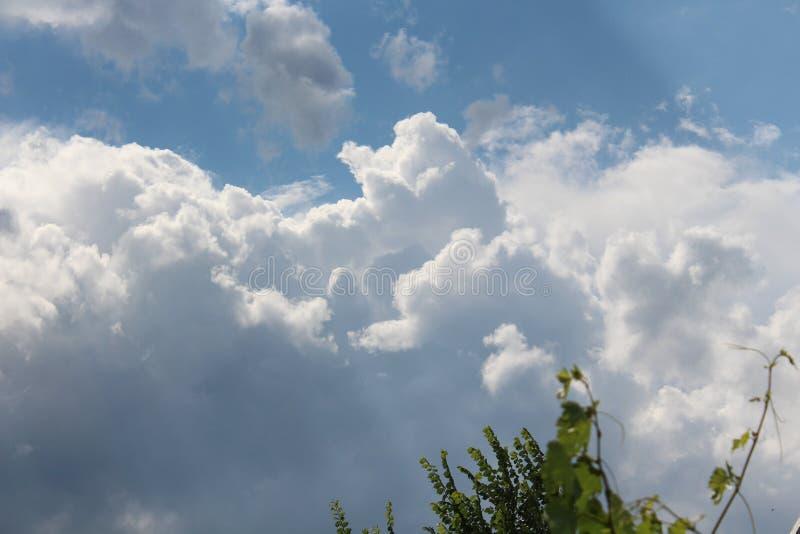 Le ciel illimité Nuages blancs La tempête vient Il pleuvra Les pluies d'été sont en plein rendement photographie stock libre de droits