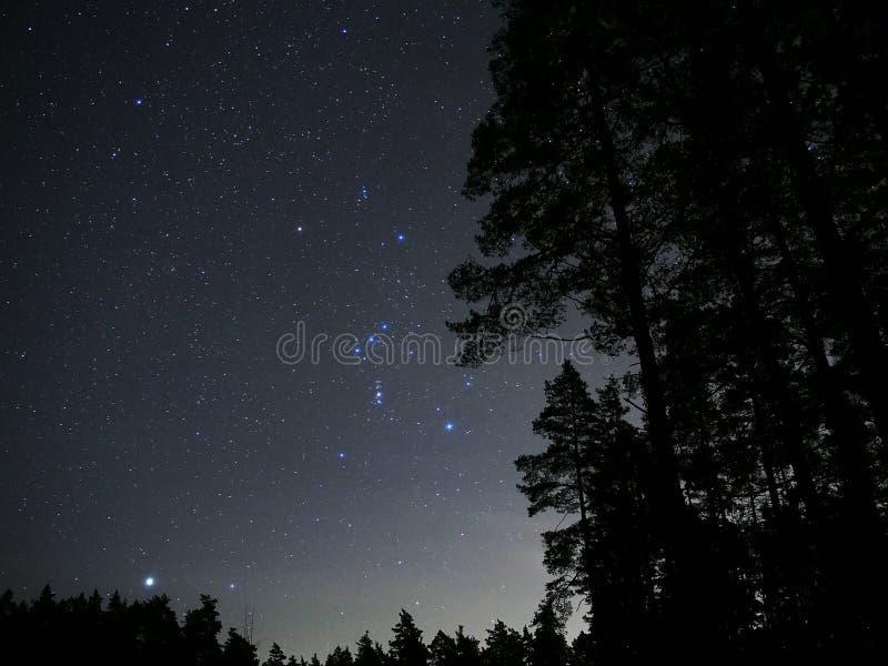 Le ciel nocturne tient le premier rôle la nébuleuse Sirius de constellation d'Orion photographie stock