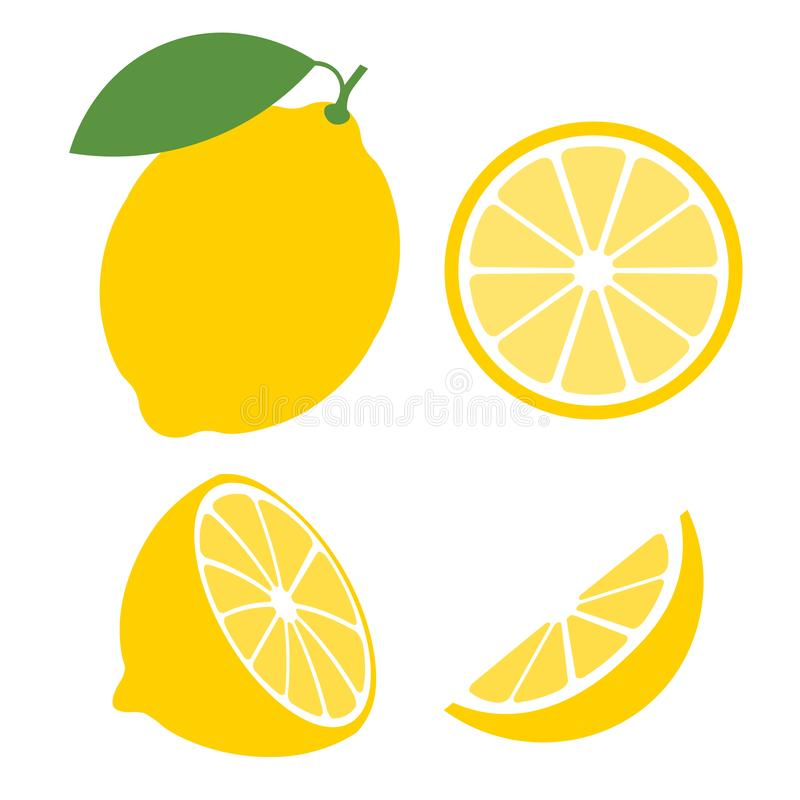 Le citron frais porte des fruits, collection d'illustrations de vecteur illustration stock