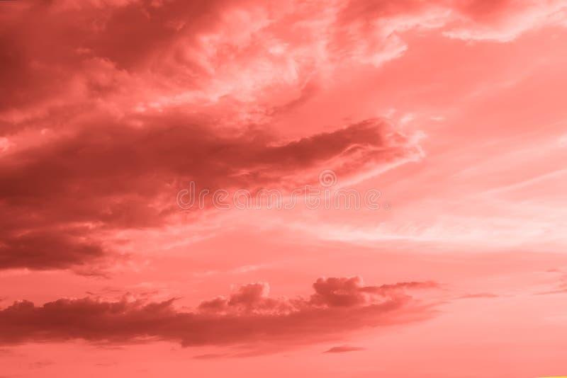 Le cloudscape naturel de coucher du soleil ou de lever de soleil a modifi? la tonalit? la couleur du de corail vivant de l'ann?e  images libres de droits