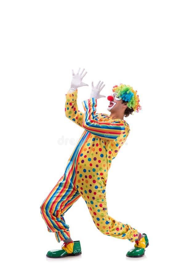 Le clown drôle sur le fond blanc photo libre de droits