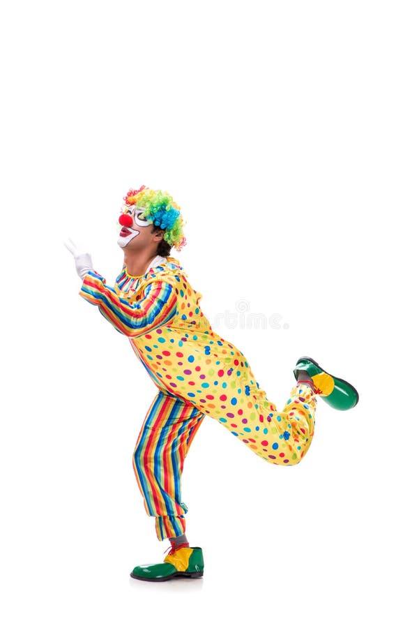 Le clown drôle sur le fond blanc photos libres de droits