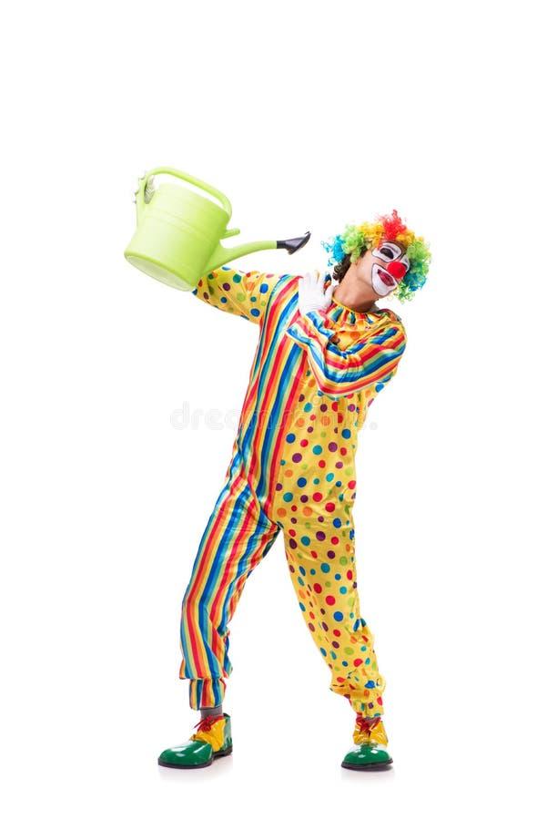 Le clown drôle sur le fond blanc photo stock