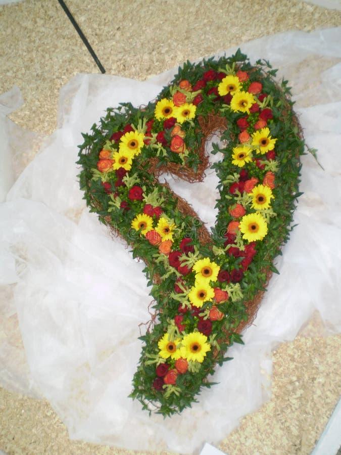 Le coeur fleurit la collection photographie stock libre de droits