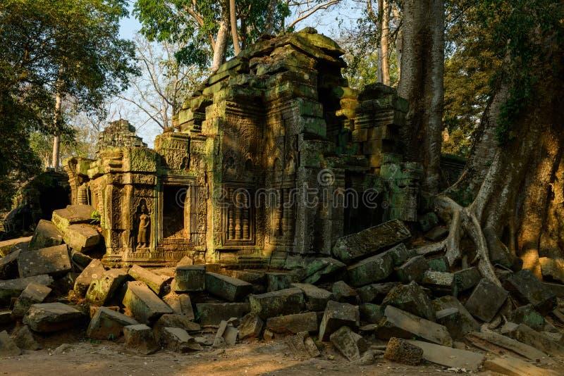Le coin sud ouest en ruine du temple Ta Prohm dans le domaine des temples de Angkor, au Cambodge. Cette photo a été prise aux temples de Angkor, vers Siem Reap royalty free stock images