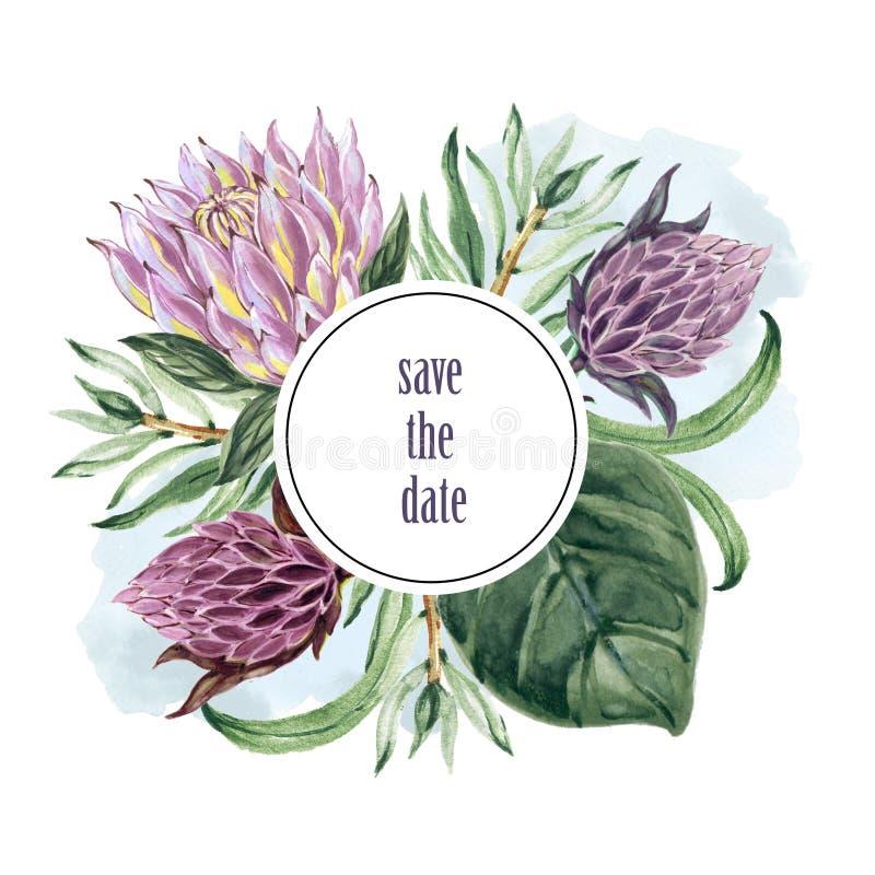 Le collage botanique avec le protea et le vert de roi part du wre de branches illustration stock
