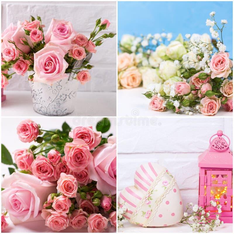 Le collage des photos romantiques avec les roses roses fleurit sur le fond texturisé image libre de droits