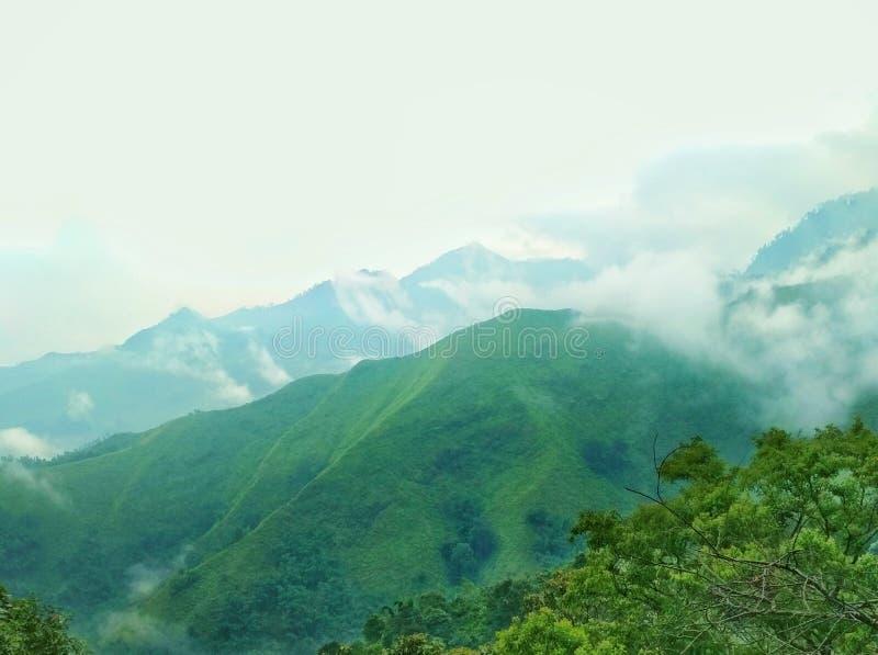 Le colline nebbiose di panoramico immagine stock