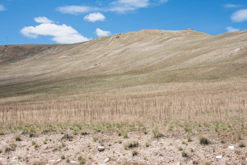 Le colline pedemontana sterili abbelliscono nel parco di stato dell'isola dell'antilope, vicino a Salt Lake City, l'UTAH fotografia stock