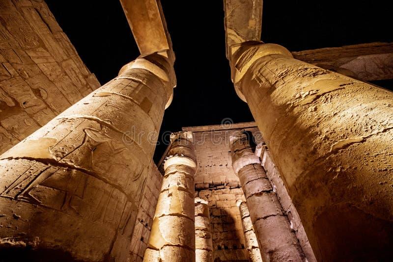 Le colonne antiche al tempio di Luxor si sono illuminate alla notte immagini stock libere da diritti