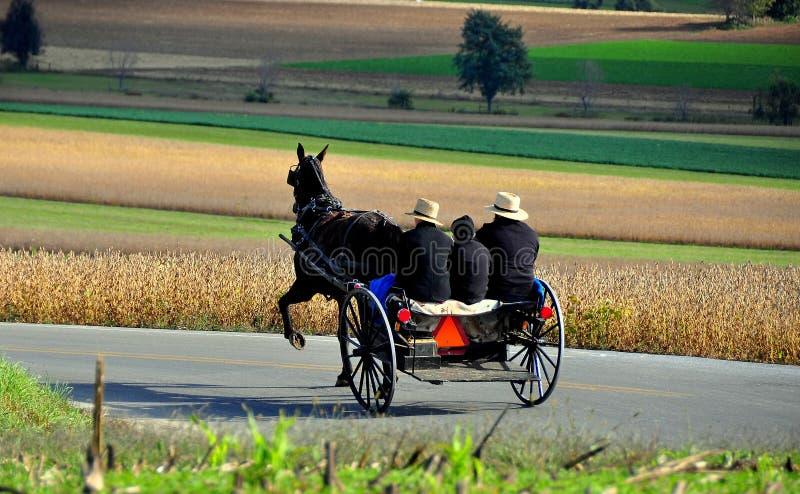 Le comté de Lancaster, PA : Équitation amish de famille dans le boguet photographie stock libre de droits