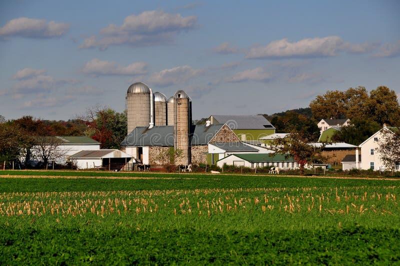 Le comté de Lancaster, PA : Ferme amish photographie stock libre de droits