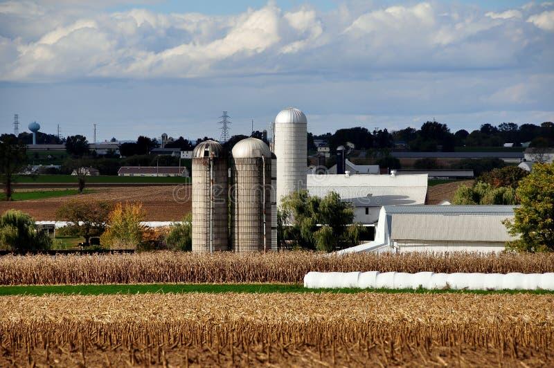 Le comté de Lancaster, PA : Ferme et champs amish photo libre de droits