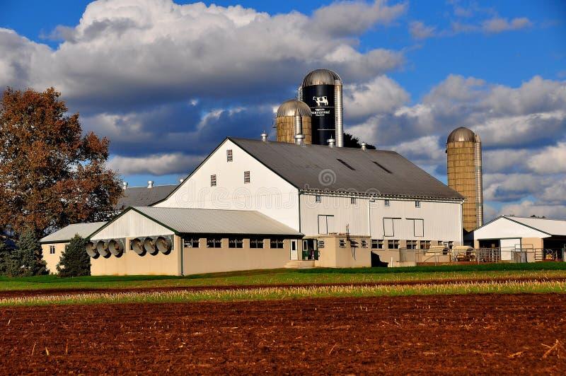 Le comté de Lancaster, PA : Ferme et champs amish images libres de droits