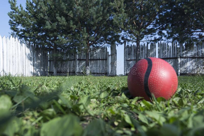 Le concept de la solitude ou du kidnapping Une boule rouge isolée se trouve sur l'herbe verte dans la cour dans la perspective d' photo stock