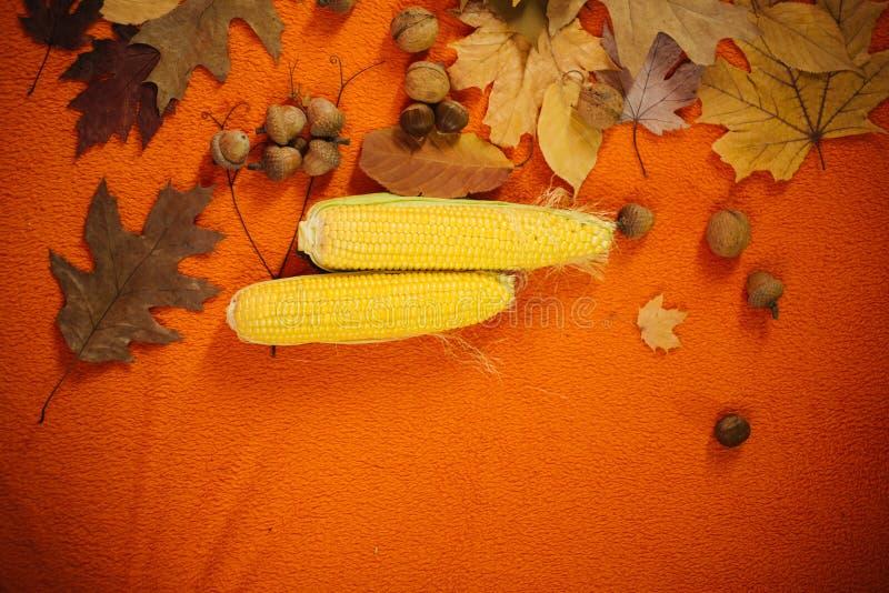 Le concept des vacances d'automne, foires, ventes, remises, remises le jour de Black Friday Un groupe de jaune-d'or photo stock