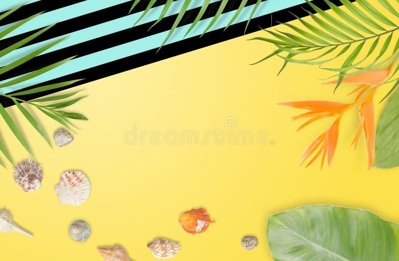 Le conchiglie con le foglie tropicali ed il turchese a strisce anneriscono la struttura royalty illustrazione gratis