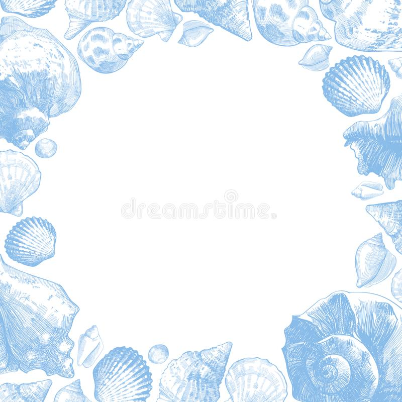 Le conchiglie incorniciano per la vostra progettazione di vita dell'oceano illustrazione vettoriale