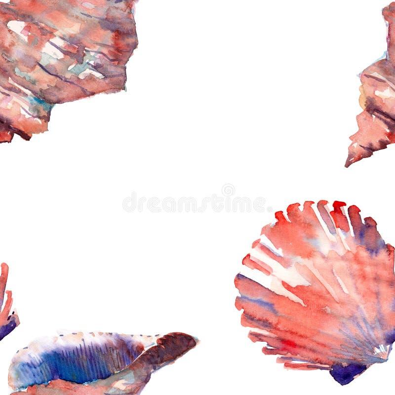 Le conchiglie variopinte della bella spiaggia marina fresca meravigliosa adorabile grafica sveglia luminosa dell'estate incornici royalty illustrazione gratis