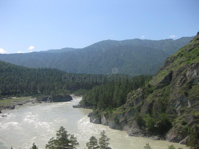 Le confluent des rivières de Katun et de Chemal Montagne Altai image libre de droits