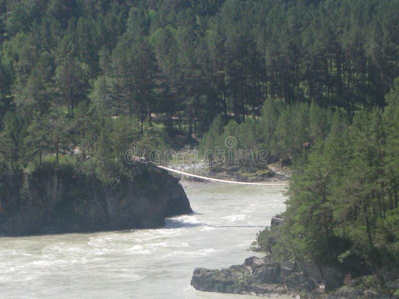 Le confluent des rivières de Katun et de Chemal Montagne Altai photographie stock libre de droits