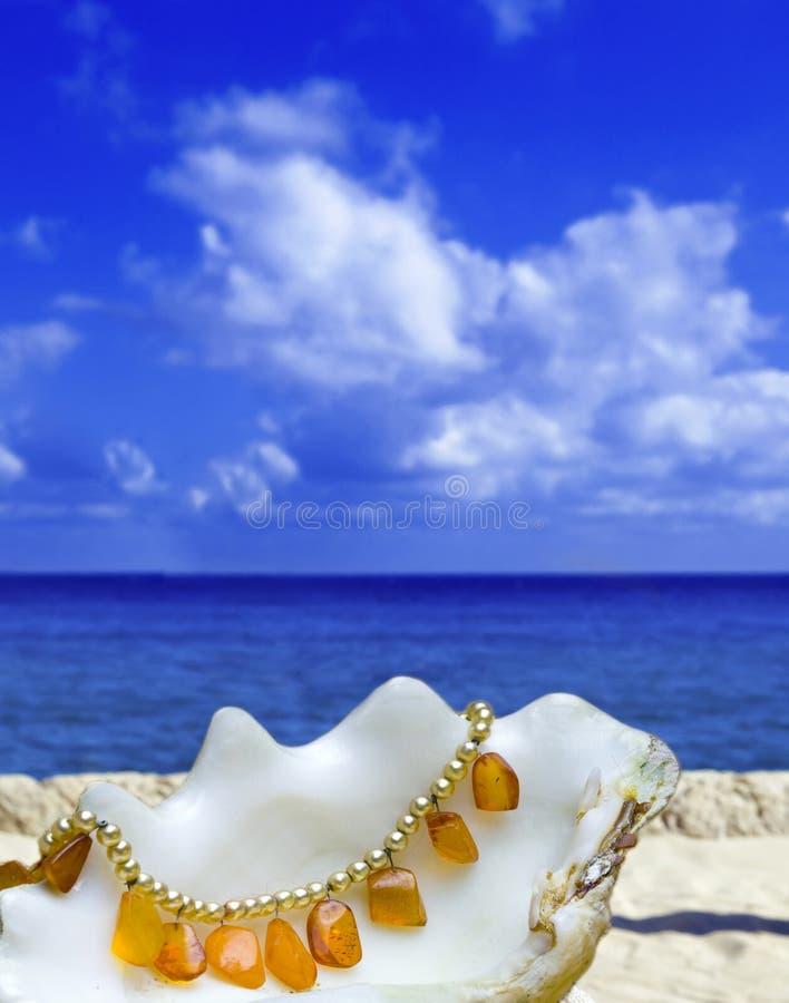 Le coperture pongono con il branello ambrato su priorità bassa dell'oceano immagini stock