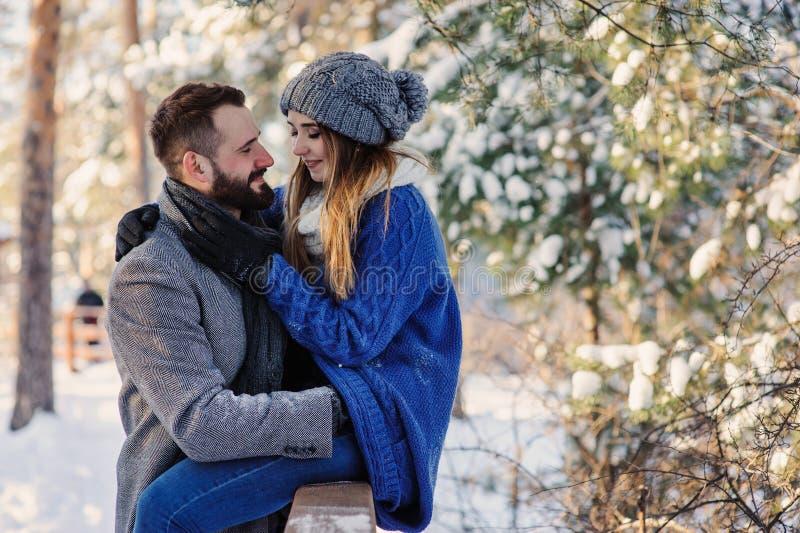 Le coppie amorose felici che camminano nella foresta nevosa dell'inverno, spendente il natale vacation insieme Attività stagional immagine stock libera da diritti