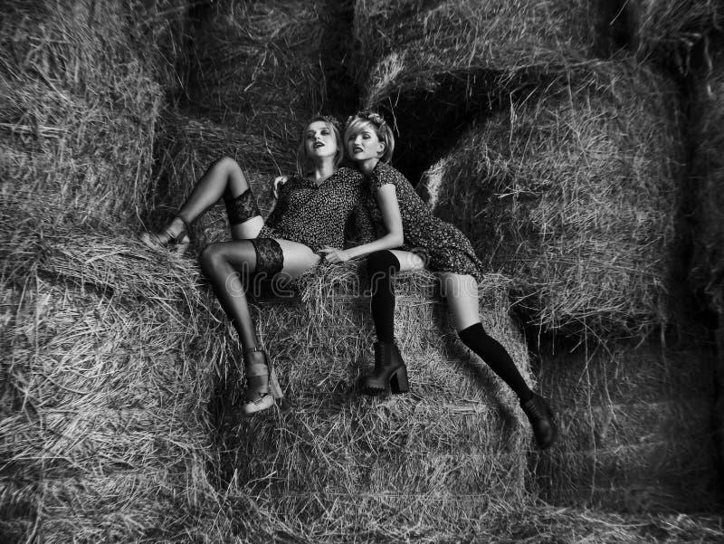 Le coppie di giovane laught lesbico sexy delle ragazze nei vestiti e nelle calze dalla luce flirtano, giocano nel pascolo in hayl fotografie stock libere da diritti