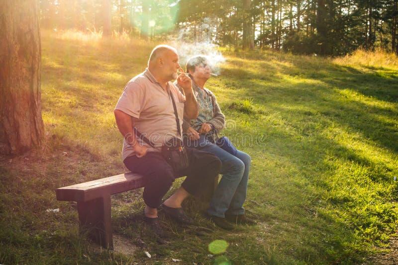 Le coppie senior che godono di un fumo irrompono il legno immagini stock