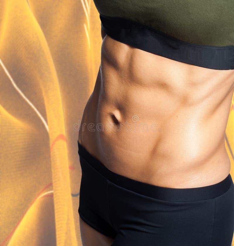 Le corps d'une jeune fille sportive Fille sexuelle de ventre engagée dedans photos stock