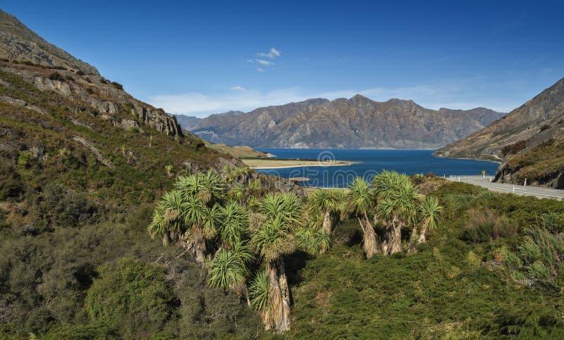 Le cou, point de vue de lac Wanaka et de lac Hawea, Nouvelle-Zélande à leur point plus étroit photo libre de droits