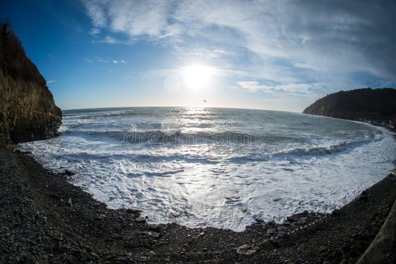 Le coucher du soleil sur la côte de la Mer Noire la mouette monte au-dessus des vagues photos stock
