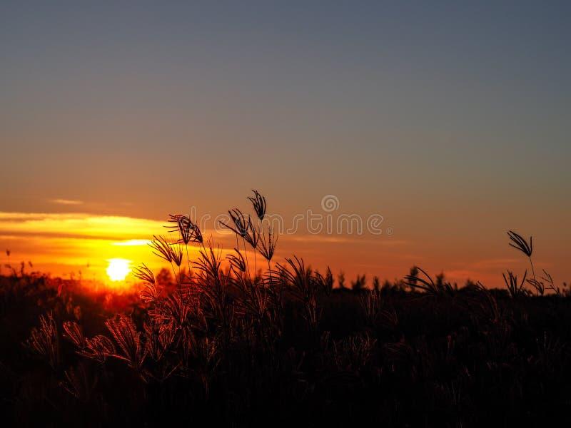 Le coucher du soleil le temps le soir quand disparaît ou lumière du jour se fanent image stock