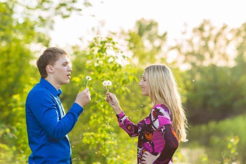 Le couple dans des blowballs de soufflement d'amour fleurit dans les visages de l'un l'autre Personnes de sourire et riantes ayan images libres de droits
