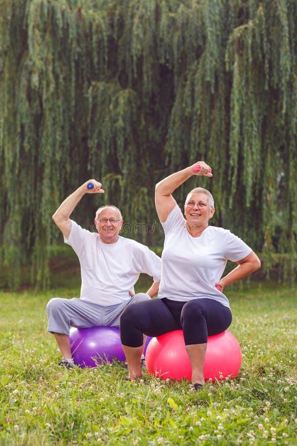 Le couple de retraité faisant la forme physique s'exerce sur la boule de forme physique en parc photographie stock libre de droits