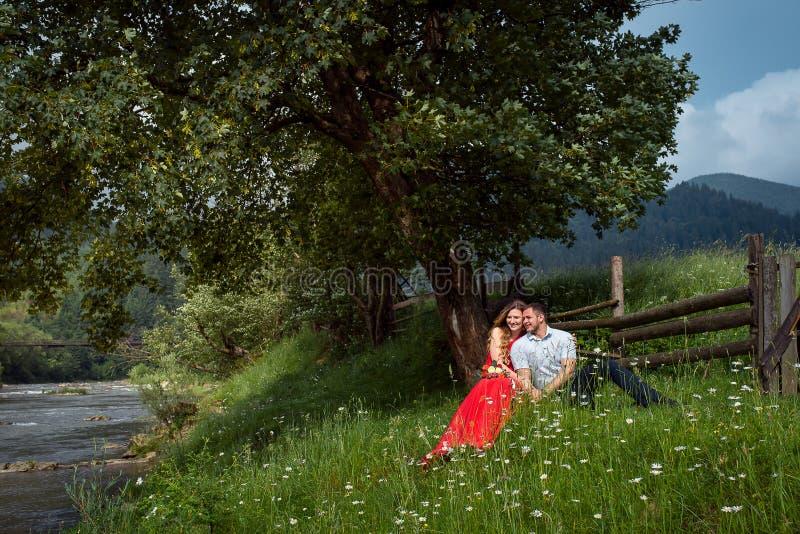 Le couple de sourire de charme étreint tout en se reposant sur le pré vert de camomille sous l'arbre près de la barrière en bois  image stock