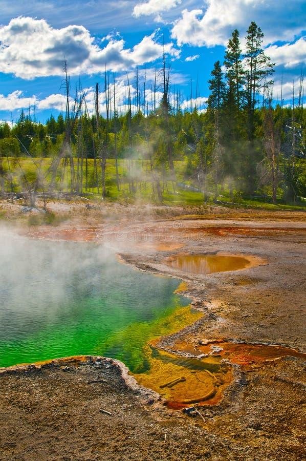 Le courant ascendant met Yellowstone en commun photo libre de droits