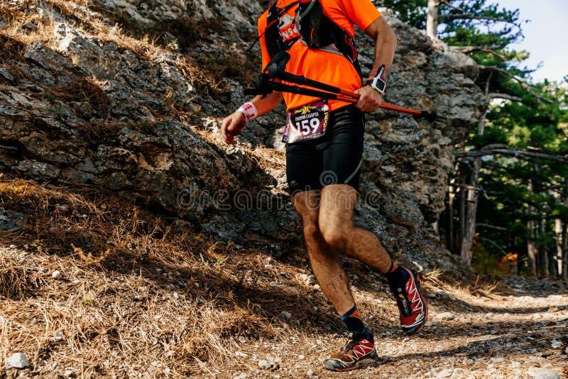 le coureur d'athlète d'homme avec des poteaux de trekking courant la forêt traînent photos stock