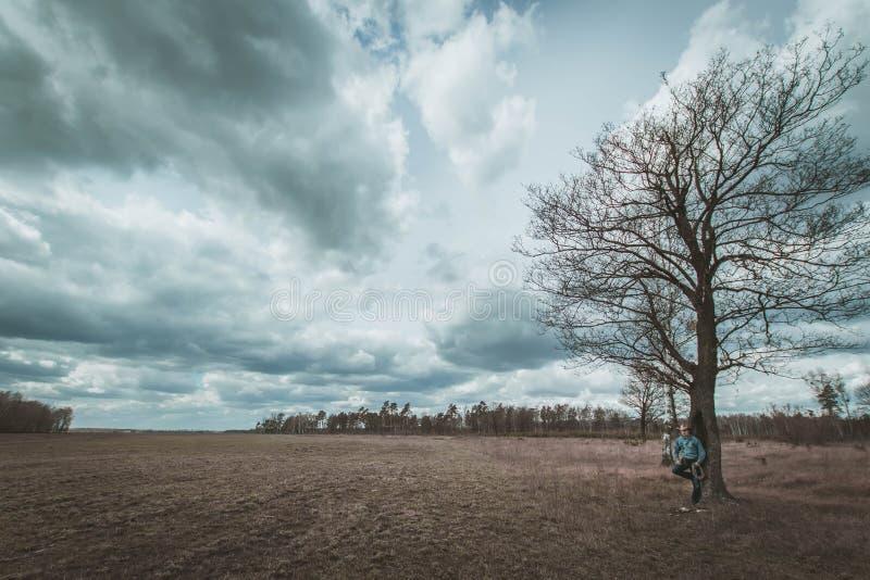 Le cowboy manque l'arbre, images libres de droits