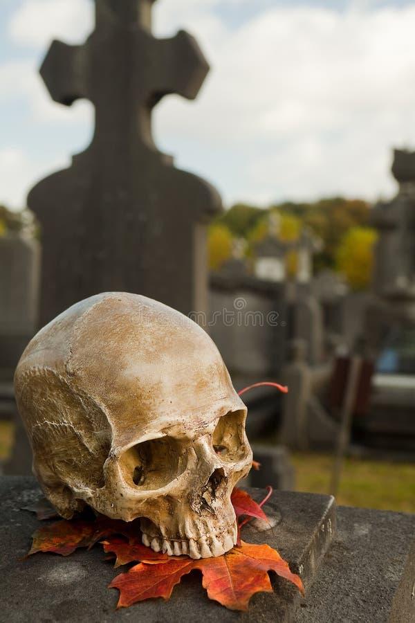 Le crâne de tout le saint sur une tombe image libre de droits