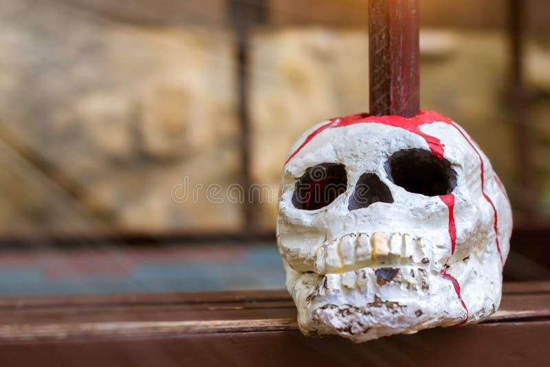 Le crâne est ficelé sur un poteau photo libre de droits