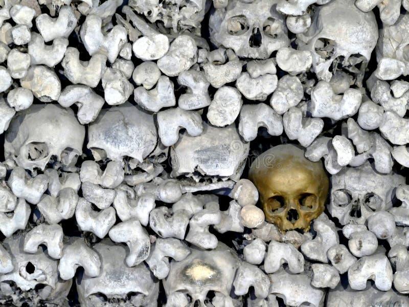 Le crâne et les os humains dans les catacombes foncées photo stock