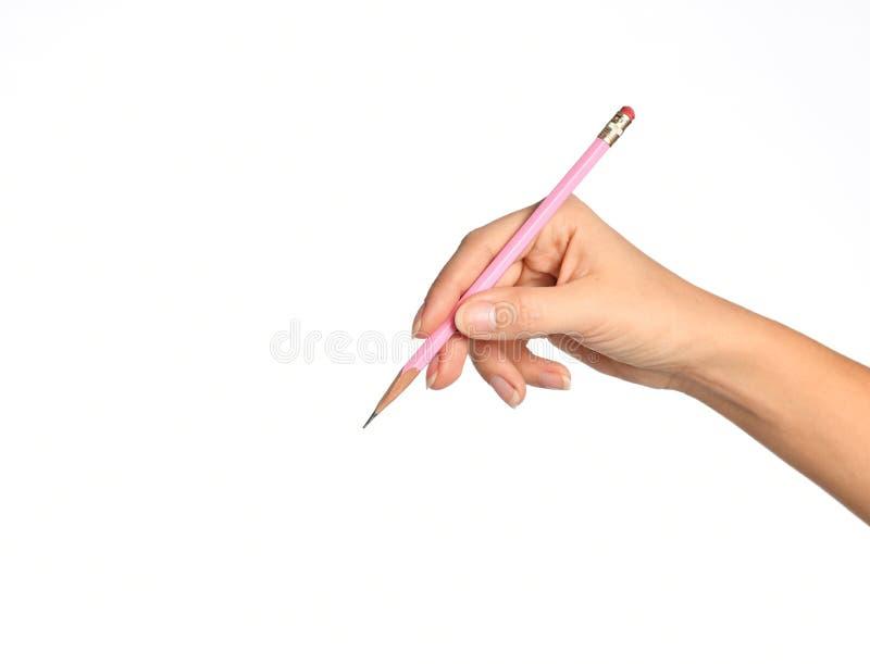 Le crayon en bois de rose de prise de main de femme prêt à écrire a isolé sur un blanc images libres de droits
